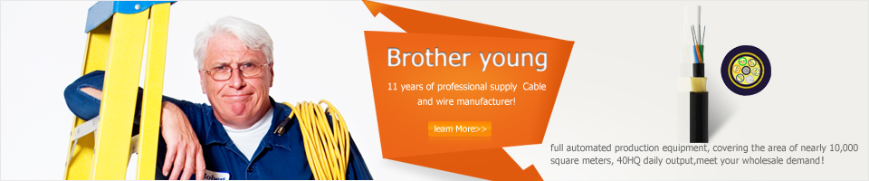 11 years of professional supply  Cable and wire manufacturer!