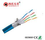Cat7 ftp cable.doc