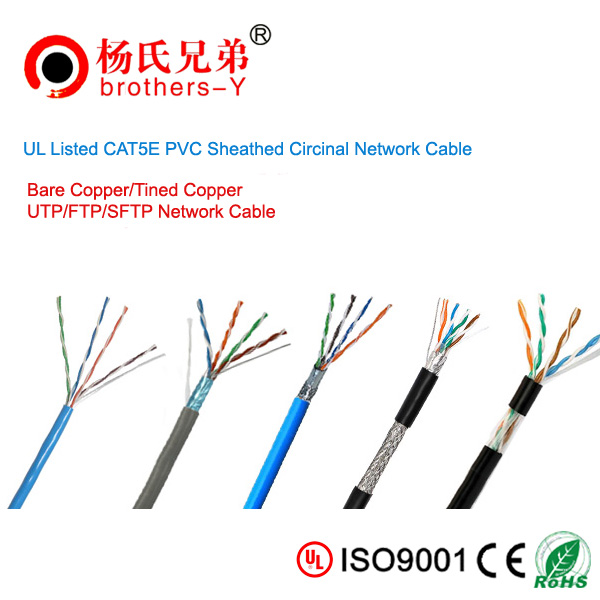 wholesaler network cable from shenzhen
